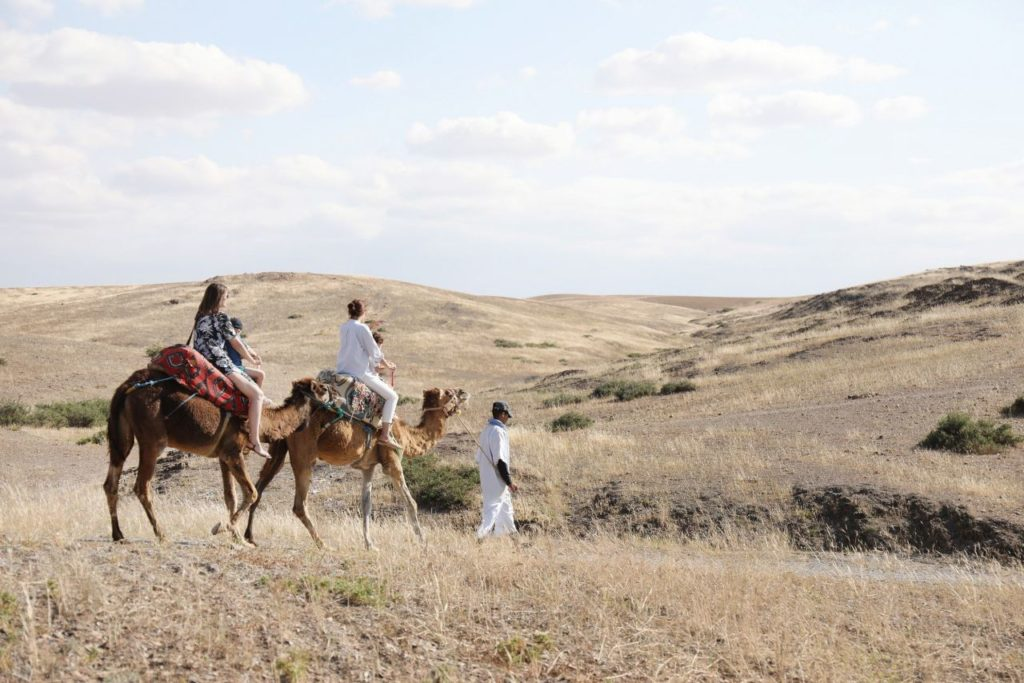 Morocco: Agafay Desert Camel Ride