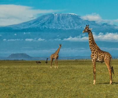 Ultimate Kenyan Safari