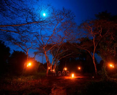 Wilpattu Safari Camp