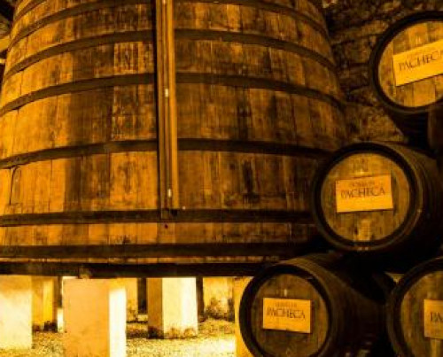 Pacheca Wine House
